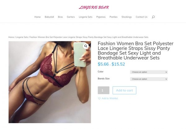 lingeriebear2 Start Your Own Dropship Business Working From Home